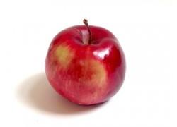 Pomme de Neige Step-Over