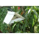 Codling Moth Pheromone Trap with refills